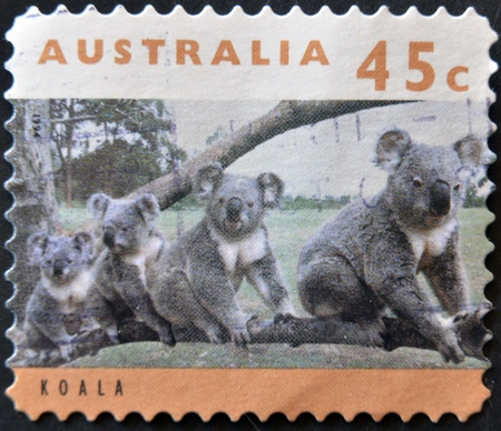 AUSTRALIA - CIRCA 1994: stamp printed by Australia, shows koala family, circa 1994  Stock Photo - 11582039