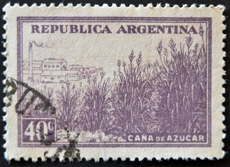 ARGENTINA - CIRCA 1936: A stamp printed in Argentina shows sugarcane field, circa 1936  photo