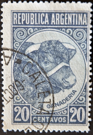ARGENTINA - CIRCA 1935: A stamp printed in The Argentina shows image of an Bull, Argentina, circa 1935 Stock Photo - 11582425