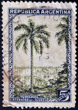 ARGENTINA - CIRCA 1946: A stamp printed in Argentina shows Iguazu Falls, tourism, circa 1946 photo