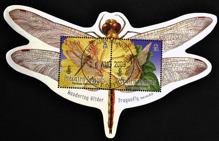 flavescens: PITCAIRN ISLANDS - CIRCA 2009: A stamp printed in Pitcairn islands shows a pantala flavescens, circa 2009