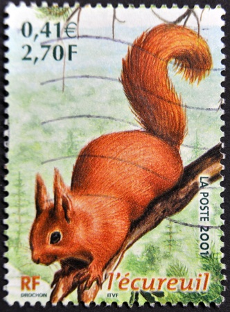 FRANCE - CIRCA 2001: A stamp printed in France shows a squirrel, circa 2001 photo