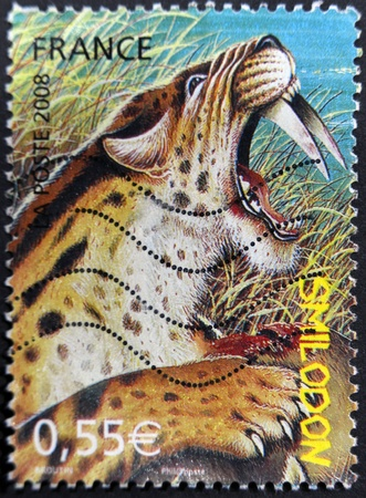 FRANCE - CIRCA 2008: A stamp printed in France shows a saber tooth, circa 2008 Stock Photo - 11878928