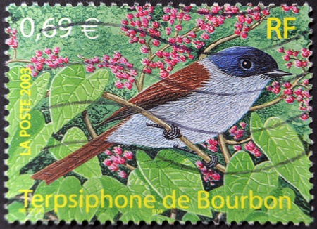 FRANKREICH - CIRCA 2003: Ein Stempel in Frankreich gedruckt zeigt einen Vogel, Terpsiphone von Bourbon, circa 2003