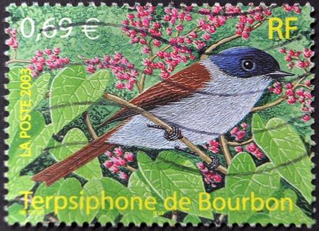 FRANCIA - CIRCA 2003: Un sello impreso en Francia muestra un pájaro, Terpsiphone de Borbón, en torno a 2003