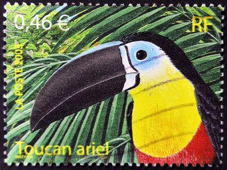 FRANCE - CIRCA 2003: A stamp printed in France shows an ariel toucan, circa 2003 photo