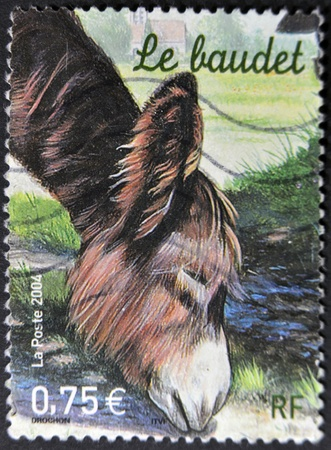 FRANCE - CIRCA 2004: A stamp printed in France shows the donkey, circa 2004 photo