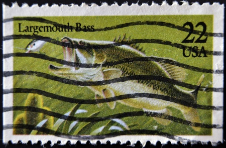 UNITED STATES OF AMERICA - CIRCA 1990: A stamp printed in USA shows a largemouth bass, circa 1990 photo