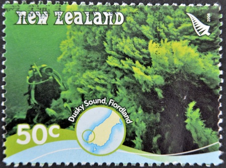 NEW ZEALAND - CIRCA 2008: A stamp printed in New Zealand shows a diver in the dusky sound, Fiordland, circa 2008 photo