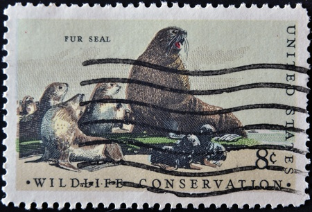 wildlife conservation: UNITED STATES - CIRCA 1972: stamp printed in USA shows fur seal, wildlife conservation, circa 1972