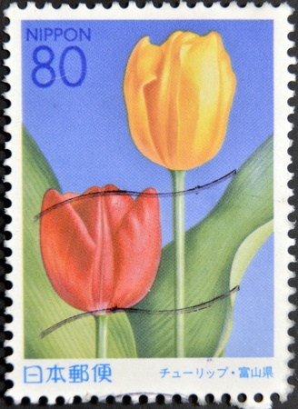 JAPAN - CIRCA 2000: A stamp printed in japan shows Tulip, circa 2000 Stock Photo - 12039703