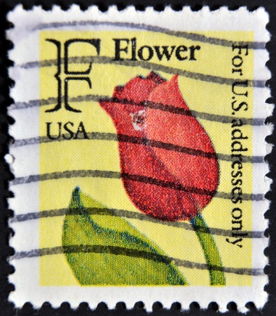 UNITED STATES OF AMERICA - CIRCA 1980: A stamp printed in the USA shows red tulip, circa 1980 Stock Photo - 12039697