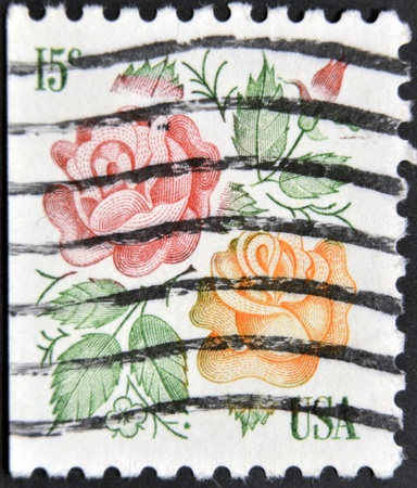 UNITED STATES OF AMERICA - CIRCA 1978: A stamp printed in USA shows two roses, circa 1978   Stock Photo