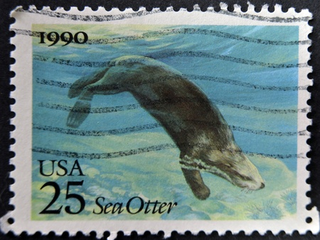 amphibious: UNITED STATES OF AMERICA - CIRCA 1990: A stamp printed in USA shows a sea otter, circa 1990