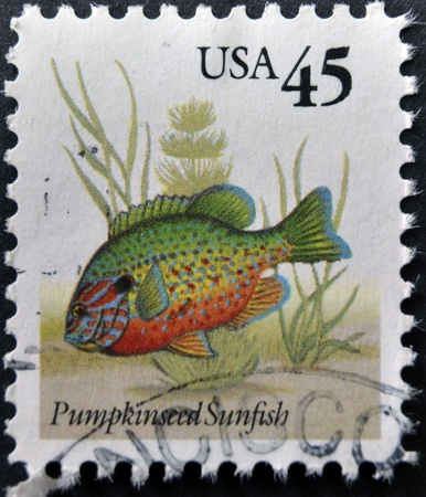 sunfish: UNITED STATES OF AMERICA - CIRCA 2011: A stamp printed in USA shows Pumpkinseed sunfish, circa 2011