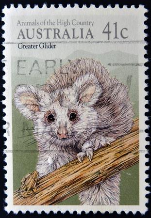 overprint: AUSTRALIA - CIRCA 1990: A stamp printed in Australia shows image of a Greater Glider, circa 1990