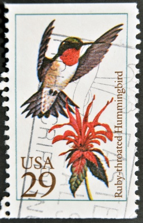 ruby throated: UNITED STATES OF AMERICA - CIRCA 1992: A stamp printed in USA shows ruby throated hummingbird, circa 1992