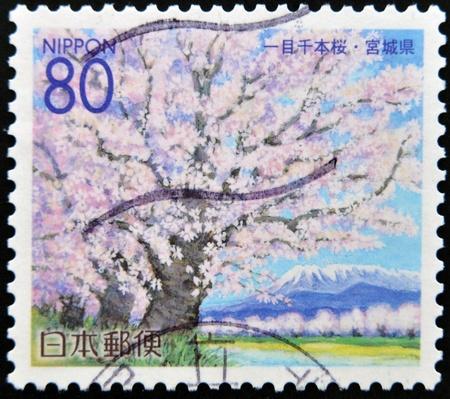 JAPON - CIRCA 2000: Un timbre imprim� au Japon, pr�fecture de Miyagi, d�peint Cherry Blossoms, circa 2000 Banque d'images - 12207407