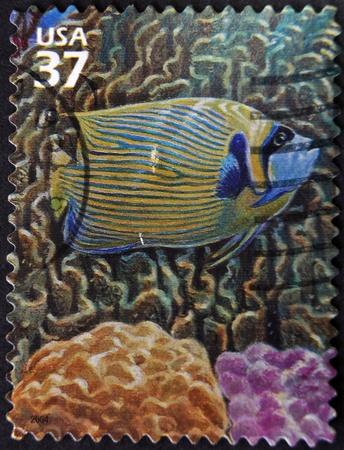 pomacanthus imperator: STATI UNITI D'AMERICA - CIRCA 2004: Un timbro stampato in USA Angelfish showsEmperor, circa 2004 Archivio Fotografico