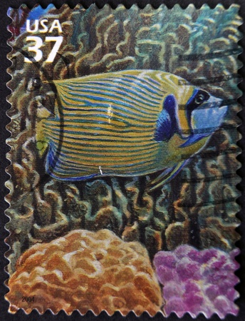 UNITED STATES OF AMERICA - CIRCA 2004: A stamp printed in USA showsEmperor Angelfish, circa 2004 Stock Photo - 12207549