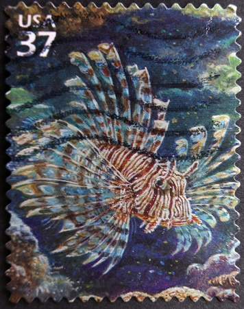 dragonfish: UNITED STATES OF AMERICA - CIRCA 2004: A stamp printed in USA shows lionfish, circa 2004 Stock Photo