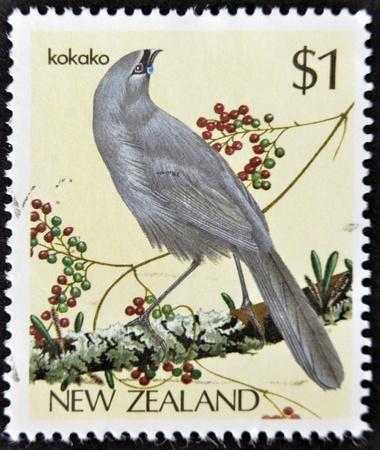 NEW ZEALAND - CIRCA 1985: stamp printed in New Zealand shows bird, Kokako, circa 1993.  Stock Photo