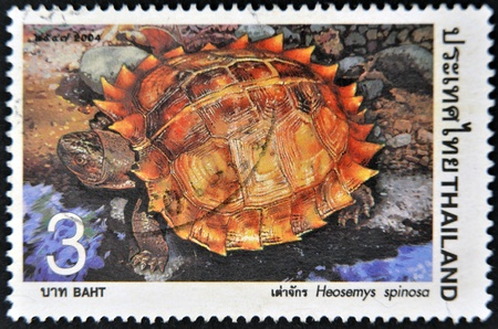 THAILAND - CIRCA 2004: A stamp printed in Thailand shows Heosemys spinosa, circa 2004 Stock Photo - 12445534