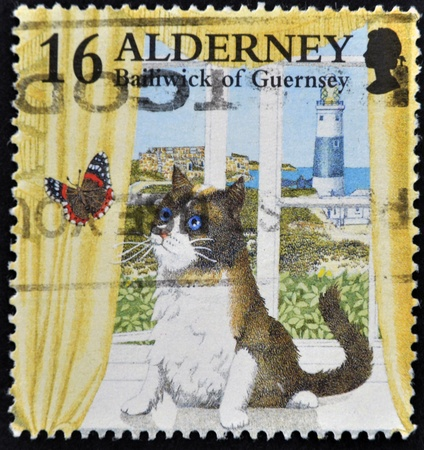 bailiwick: ALDERNEY - CIRCA 1990: A stamp printed in Alderney, Bailiwick of Guernsey, shows cat watching a butterfly in the window, circa 1990