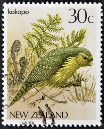 NEW ZEALAND - CIRCA 1986: A stamp printed in New Zealand, shows a bird Kakapo (Strigops habroptilus), circa 1986 Stock Photo - 12464739