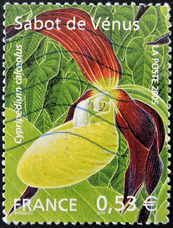 rance: FRANCE - CIRCA 2005: A stamp printed in rance shows a Cypripedium calceolus orchid, circa 2005 Stock Photo