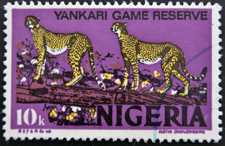 NIGERIA - CIRCA 1973  Postage stamp printed in Nigeria, shows cheetah in the Yankari National Park, circa 1973