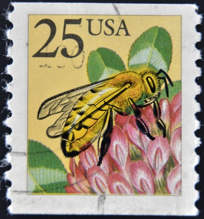 mellifera: USA - CIRCA 1988: A stamp printed in the USA, shows the Western honey bee (Apis mellifera), circa 1988