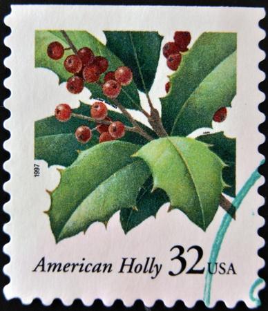 USA-CIRCA 1997 A stamp printed in USA shows image of the Ilex opaca, American Holly, circa 1997   photo