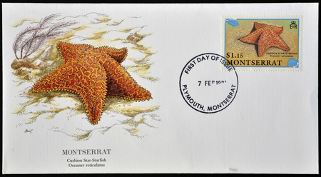 MONTSERRAT - CIRCA 1999: A postcard printed in Monserrat shows cushion star starfish, oreaster reticulatus, circa 1999
