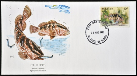 SAINT KITTS AND NEVIS - CIRCA 1991: A postcard printed in St Kitts shows a nassau grouper, circa 1991