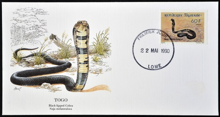 TOGO - CIRCA 1990: A postcard printed in Togo shows black-lipped cobra, naja melaneuloca, circa 1990