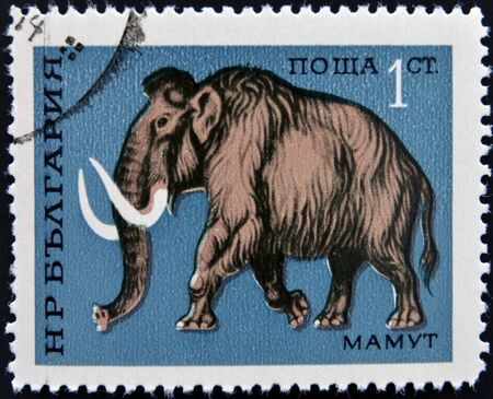 BULGARIA - CIRCA 1971  a stamp printed by BULGARIA shows mammoth, circa 1971  photo
