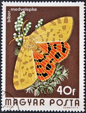 HUNGARY - CIRCA 1974  A stamp printed in Hungary a shows image of a Checked butterfly, circa 1974  photo