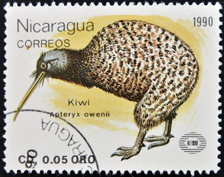 NICARAGUA - CIRCA 1990  A stamp printed in Nicaragua shows Kiwi, apteryx owenii, circa 1990  photo