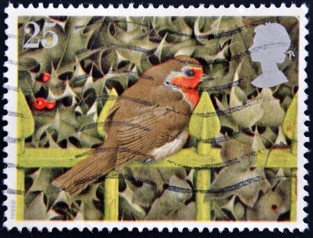 GREAT BRITAIN - CIRCA 1995  A stamp printed in United Kingdom shows image of a robin, circa 1995  photo