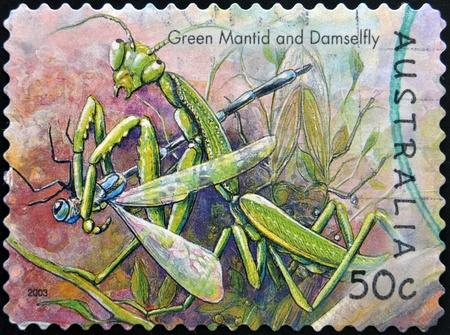 mantid: AUSTRALIA - CIRCA 2003: stamp printed in Australia, shows green mantid and damselfly, circa 2003