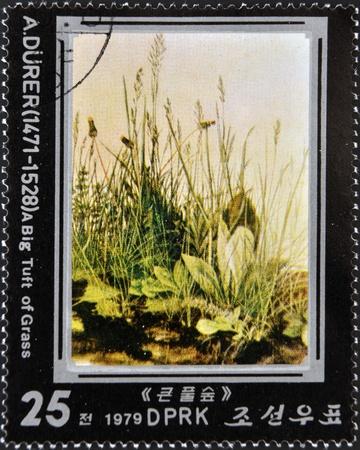 durer: Corea del Nord - CIRCA 1979: Un timbro stampato in Corea del Nord mostra ciuffo d'erba di Albrecht Durer, circa 1979