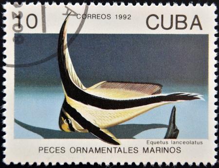 lanceolatus: CUBA - CIRCA 1992: A stamp printed in Cuba dedicated to ornamental fish, shows equetus lanceolatus, circa 1992
