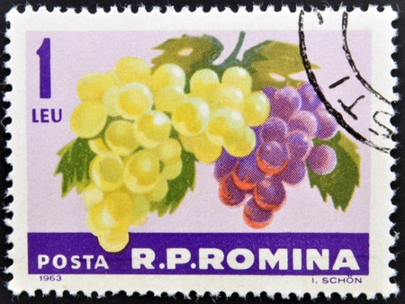 ROMANIA -CIRCA 1963: A stamp printed in Romania shows the grapes hangs on a branch, circa 1963.  Stock Photo - 13286008