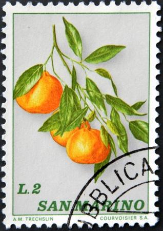SAN MARINO - CIRCA 1985: A stamp printed in San Marino shows branch with oranges, circa 1985 photo
