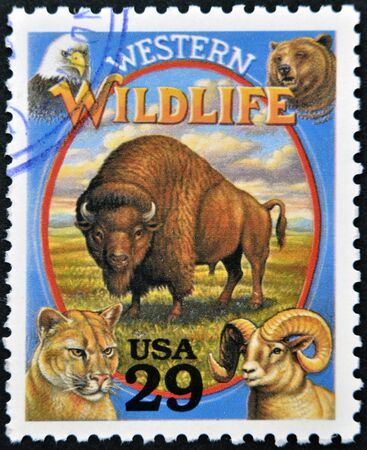 UNITED STATES OF AMERICA - CIRCA 1994  Stamp printed in USA shows Western Wildlife in the American Old West, circa 1994 Stock Photo - 13299243