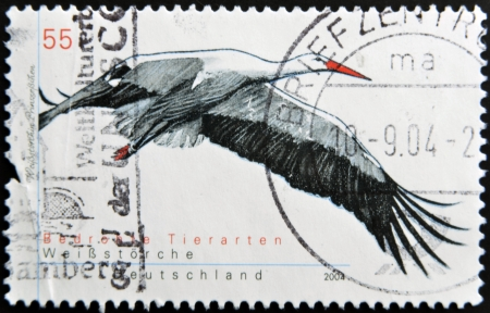 planos electricos: Alemania - CIRCA 2004: Un sello impreso en Germnay muestra una cig�e�a blanca, alrededor del a�o 2004