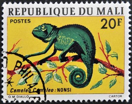 MALI -  CIRCA 1976: stamp printed in Mali shows Chameleon, circa 1976  photo