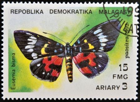 hexapod: MADAGASCAR - CIRCA 1992  A stamp printed in Madagascas dedicated to butterfly shows eusemia bisma, circa 1992