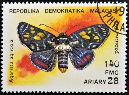 MADAGASCAR - CIRCA 1992  A stamp printed in Madagascas dedicated to butterfly shows aqarista aqricola, circa 1992